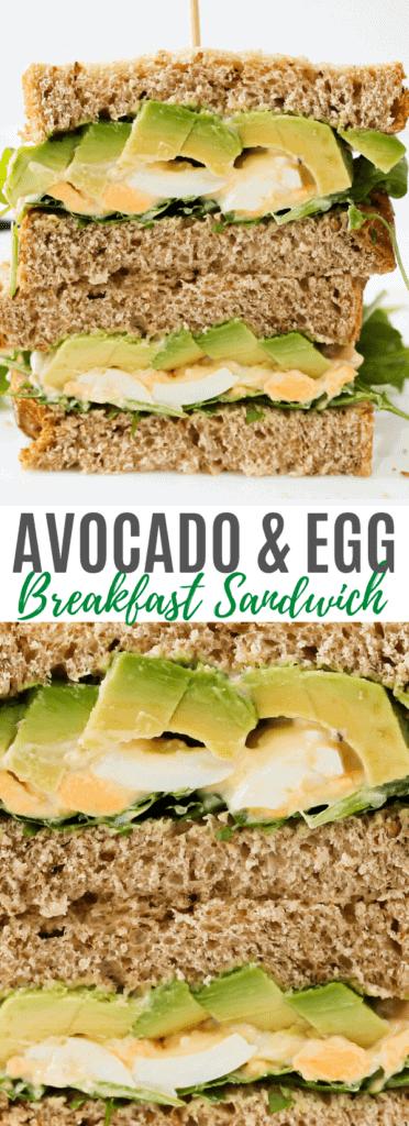 avocado-and-egg-breakfast-sandwich