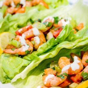 carb-lettuce-shrimp-tacos