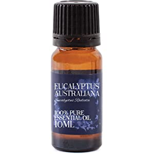 Eucalyptus-Essential-Oil-10ml-100% Pure