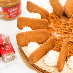 no-bake-lotus-biscoff-cheesecake-(8)