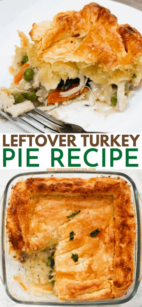 Leftover-Turkey