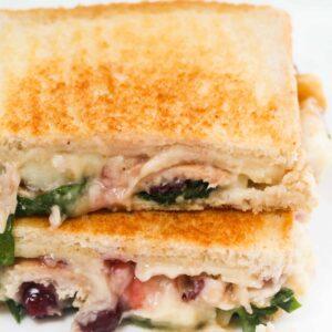 leftover-sandwich10