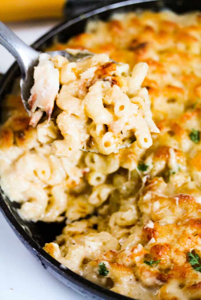 crab macaroni and cheese on a spoon